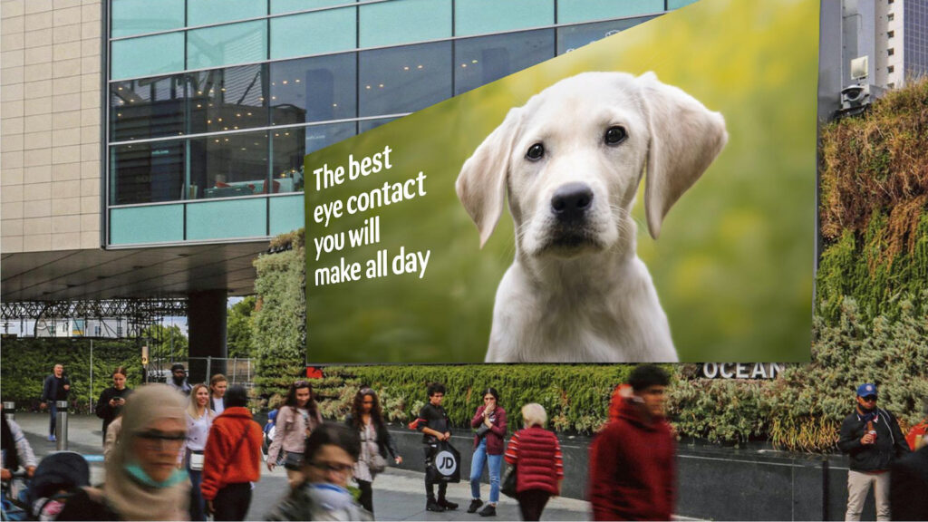 The&Partnership Pets at Home - Ocean Outdoor entry